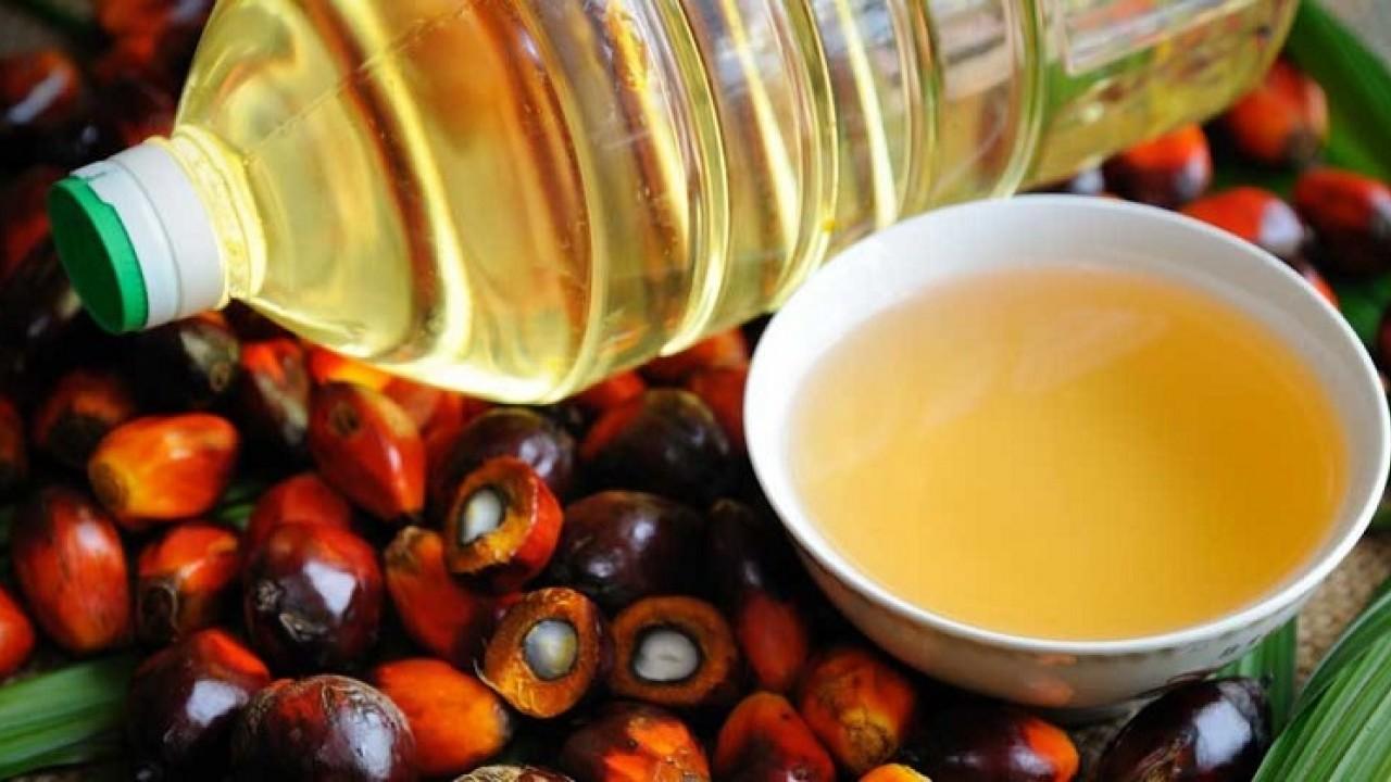 Minyak Sawit Indonesia Dilarang, DPR Desak Pemerintah Aktif Lobi Negara-negara Eropa