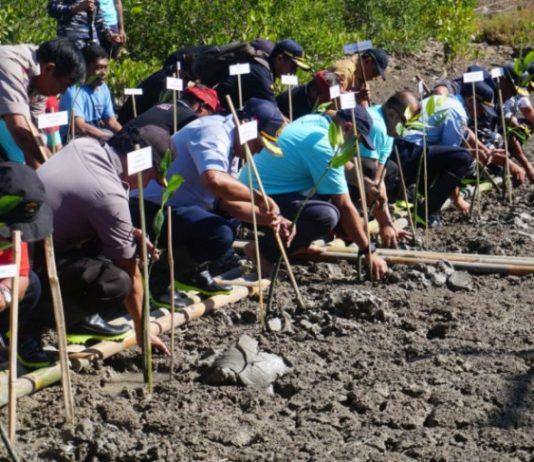 Peduli Lingkungan, Pelindo III tanam 50.000 bibit mangrove di Pelabuhan Benoa