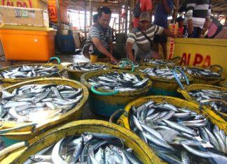 Serap Aspirasi Nelayan, Ketua DPD Kunker Ke Banyuwangi