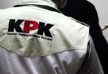 KPK Dalami 14 Perusahaan Yang Diduga Terlibat Penyelundupan Benur Lobster