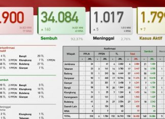 Update Kasus Covid-19 di Bali, Sembuh Bertambah 160 dan Meninggal 5 Orang