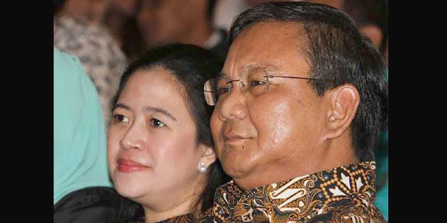 Prabowo-Puan Unggul di Atas Kertas, Jika Duet pada Pilpres 2024