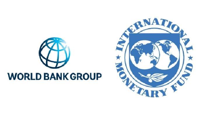 Indonesia Dapat Dana Rp 90,2 Triliun dari IMF, BI Sebut Bukan Utang